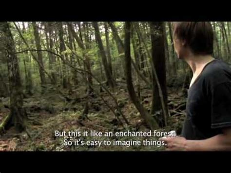 Aokigahara - The perfect place to die - Allmystery