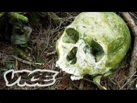 Japan's Aokigahara Forest: Suicide Forest True Story