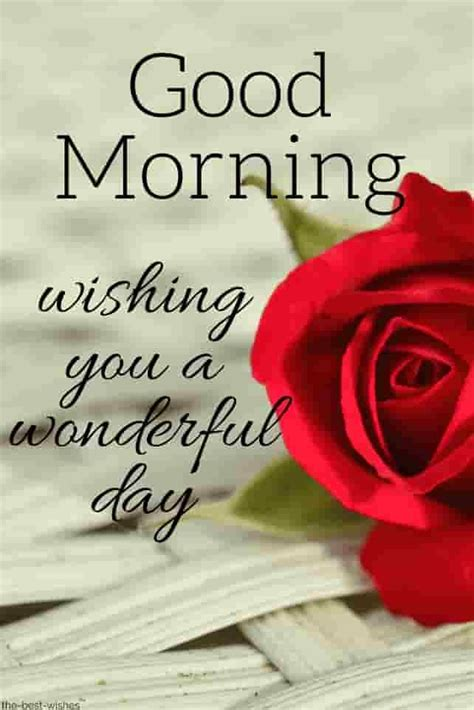 Top 134+ Good Morning Wishes With Rose - [ Best HD Images
