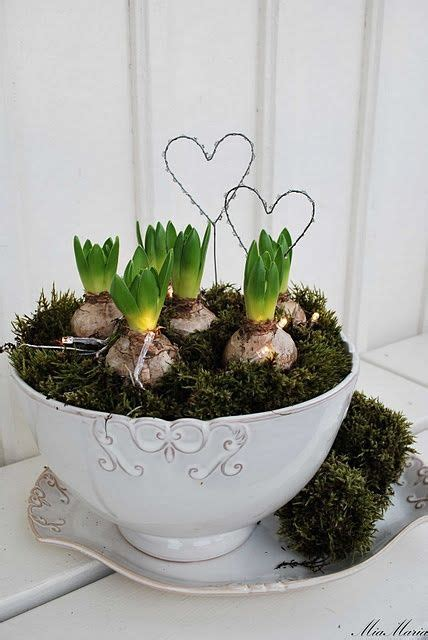 Moss cup with spring bulbs and wire hearts! | Blommor
