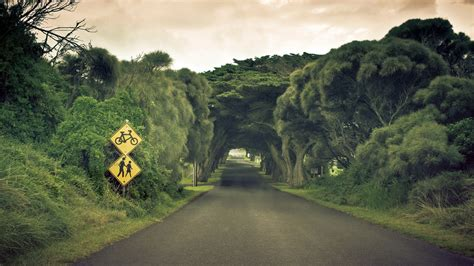 FREE 20+ Road Backgrounds in PSD | AI