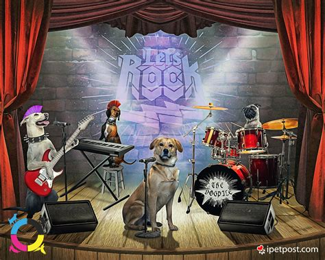 Let's Rock Dog Band by ipetpost