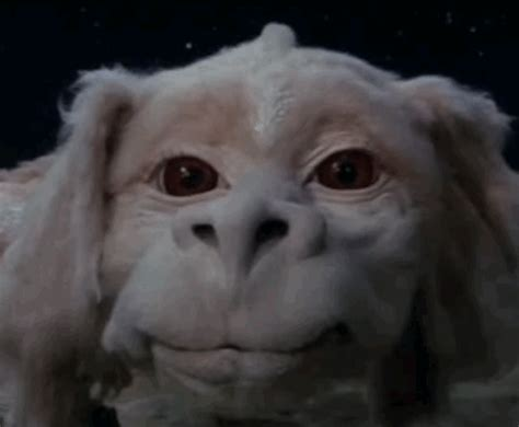 Falcor, The Luck Dragon in 2020   The neverending story